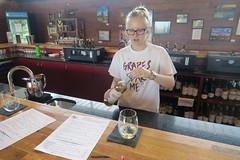 20160905_1310_603_Fredericksburg5 (EasyAim) Tags: vineyards wineries hyemeadowwinery 290 vacation fredericksburg texas tx hye usa