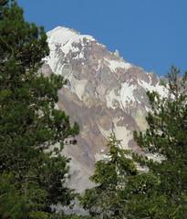mountain peekaboo (carolyn_in_oregon) Tags: mthoodnationalforest lostcreek camping mthood oregon