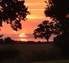 Sunset Wonder (amanda.parker377) Tags: skyformation sunsetcolours sunset farmland trees fields