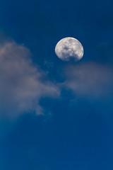 Moon at sunrise (DrScottA) Tags: africa kenya moon sunrise blue shompoleconservancy