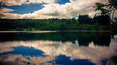 Natural mirror. (Jean McLane) Tags: lakeview forest jura france hdr mirror water landscape lakescape cloudy clouds nuages nubes