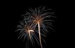 _MG_1172 (sdferrell) Tags: dmt fireworks ny