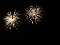 _MG_1202 (sdferrell) Tags: dmt fireworks ny
