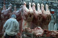 Rungis - March des viandes (marie-adeline.rothenburger) Tags: rungis march viande boeuf boucherie