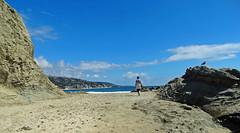 Beach Walk, Laguna Tide Pools, CA 9-16 (inkknife_2000 (7 million views +)) Tags: california beaches usa landscape lagunabeach sandandsurf beachlife sea ocean pacific surf peopleonbeach womanonbeach tidepools seagull skyandclouds