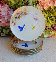 Nippon Porcelain Plates ~ Hand Painted Butterflies Pink Flowers (Donna's Collectables) Tags: nippon porcelain butterflies pink flowers thanksgiving christmas