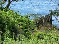 (mahler9) Tags: mahler9 jaym fence rockport massachusetts northshore