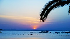 Sweet dreams! Faites de beaux rves! (dominiquita52) Tags: sunset espagne spain palmtree lamanga sea mer out