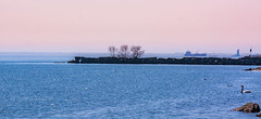 Sunny Morning (Sohail-Siddique) Tags: water lakeshore mississauga lake trees river colours blue orange ship rocks passage serene nature swan birds sparkling skyline sohail nikon d7100 photography canada cbc