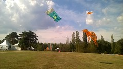 2016-09-25_virades Lacroix-Laval_6092551 (les cerfs-volants de Laetitia et Christophe) Tags: cerfvolants laetitia christophe kenny kaf ktk kangaroo kite construction fabrication couture bridage grigny rhone beauducel zoo animaux gonflables cerfvolant gonflable monofil