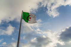 Algeria (Bilel Tayar) Tags: algeria algerie libert drapeau