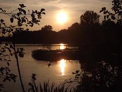 Dmmerung am See (yve_all) Tags: dmmerung sunset rhein rheinvorland licht light farben colours sonne sun natur nature blickwinkel view