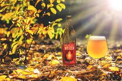 DSC_2445 (vermut22) Tags: beer butelka browar beertime bottle beerme brewery birra beers biere