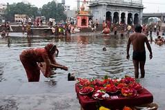 Godavari River, Nashik, India (Colin Roohan) Tags: travel india asia holy maharashtra bathing hindu hinduism nashik godavari