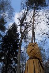 (anirbas_84) Tags: kunst skulptur holz baum oldenburg uhu ammerland eule friedrichsfehn wildenloh