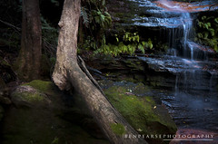Salote pools (benpearse) Tags: blue mountains terrace australia falls waterfalls nsw april hazelbrook 2013 salote