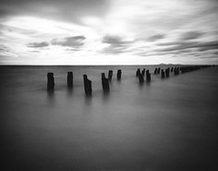 Clifton Springs, Victoria, AU, 2013 () Tags: handy au 4x5 sinar trix320
