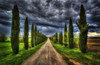Terra senese (R.o.b.e.r.t.o.) Tags: trees sky italy cloud tree green alberi clouds nikon italia hill hills tuscany roberto toscana cupressus cypresses cretesenesi asciano cipressi d700 terresenesi hdr5raw