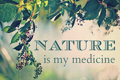 Nature is my medicine (mkhmarketing) Tags: inspiration nature writing relax hope words poetry poem quote thoughtful saying zen harmony soul motivation relaxation naturalbeauty inspire healing stress soulful mothernature quotation heal naturalmedicine prose alternativemedicine stressrelief naturalenvironment naturequote photoquote quoto inspirationalquote lawsofnature lawofnature naturalhealing inspirationalquotation motivationalquotations inspiringquote imagequote quotephoto relaxationquote motivationalsayings picturequote naturequotation natureismymedicne quotesaboutbeauty medicinequotes quotesabouthealing alternativemedicinequotes quotesaboutthenaturalenvironment saramosswolfequotation saramosswolfequote quotesaboutnature quotesaboutmedicine naturalbeautyquotation