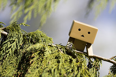 """119/365 : """"Danbo fait de l'escalade"""" (Nutena) Tags: tree character manga tall figurine arbre japon projet personnage yotsuba danbo hauteur cyprs 365days 365project danboard uneanneenimages oneyearinimages"""