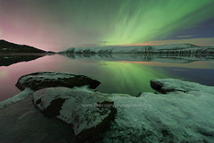 Iceland's Aurora Borealis. (baddoguy) Tags: city pink winter light sky orange mountain lake snow reflection green ice beach night star iceland long exposure purple shore aurora peninsula reykjanes auroraborealis borealis kleifarvatn northernlight
