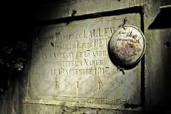 Krypta (frank-heinen-photographer) Tags: friedhof alt kirche ruine architektur grab tod bau gebaeude verlassen namur einsam belgien denkmal krypta morbide lostplace gruft
