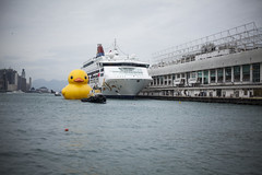 Gangster Rubber Duck Rubber Duck Project Hong Kong