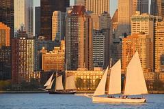 Sailboats (truthinpassingx) Tags: newyorkcity newyork sailboats lowermanhattan