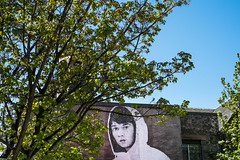 20130517-0059 (www.cjo.info) Tags: boy people urban plant streetart tree art digital lens scotland hoodie clothing flora mural edinburgh child unitedkingdom fujifilm citycenter oldtown cowgate exif:iso_speed=400 exif:focal_length=35mm exif:make=fujifilm camera:make=fujifilm geo:city=edinburgh geo:state=scotland xmount geo:countrys=unitedkingdom exif:aperture=90 fujinonxf35mmf14r xfmount fujifilmxe1 camera:model=xe1 exif:model=xe1 exif:lens=xf35mmf14r geo:lat=55948230555555 geo:lon=31921111111117