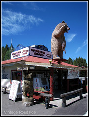 Giant liquor store bear (Vintage Roadside) Tags: bear oregon centraloregon kens roadsideattraction liquorstore crescentlake sportinggoods bearstatue roadsidegiant vintageroadside