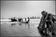 Before sailing (ujjal dey) Tags: blackandwhite monochrome fisherman sail westbengal digha ujjal ujjaldey