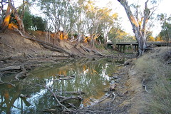 Drought (Jan Diamond) Tags: drought river trees echuca
