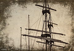 Viejos mares, nuevos vientos. (Franco DAlbao) Tags: francodalbao dalbao 1978 barco ship cuttysark mstiles masts velero tallship mar sea vigo navegacin sailing bn bw gavias arboladura