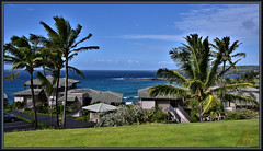Looking out over Oneloa Bay (WanaM3) Tags: wanam3 nikon d750 nikond750 hawaii maui kapalua kapaluabayvillas vista ocean pacificocean