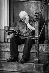 amigos (Mauro Esains) Tags: seor amsterdam holanda sentado gato negro leyendo diario casa entrada escalera blanco y nikon
