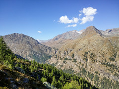 20160911_102034 (buliro) Tags: mountains montagne montagnes alpi alpes alps vda valledaosta valle daosta daoste vallée valléedaoste aostavalley valsavarenche granparadiso parco nazionale grand paradis national park larch conifers mélèzes larice conifere