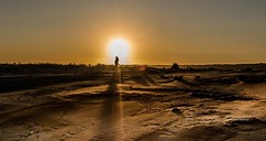 Light Of My Life (jeanmarie (been working lots of overtime)) Tags: outdoors silhouette person man landscape ocean sand gold sunlight sun sunset shore beach oceanshores jeanmarieshelton