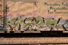 FIXER (TheGraffitiHunters) Tags: graffiti graff spray paint street art colorful freight train tracks benching benched fixer reefer