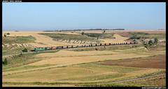 TECO en Bahabn de Esgueva (javier-lopez) Tags: ffcc railway train tren trenes adif comsa mercancas teco contenedor contenedores siderrgico bobinero bobinas bobina chapa acero 601 bitrac sgnss slmmps ermewa tramesa pmmc tramesasteel arandadeduero bilbaomercancas bahabn bahabndeesgueva 05072016