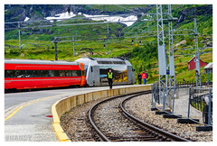 Bergen Railway (nauni84) Tags: red green snow mountain norway nordic oslo train travel traveller camera picture beautiful amazing place myrdal platform nikon nikor 70300 trainjourney enjoy scenic track nature