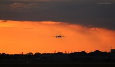 Rex & Sunset (Teutonic01) Tags: regionalexpress rex saab340b adelaideairport southaustralia zl4537 vhyrx sunset