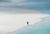 Impression de solitude (michelgroleau) Tags: plage sable solitude whitsundays australie beach alone sand marche walk australia minimalism minimalisme simplicité simplicity serenity sérénité eau water seul blue bleu paix peace ngc seascape flickraward5 minimalist lonely island île vague wave ocean