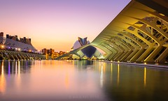Evening in the City of Arts and Sciences - Valencia (go-Foto) Tags: sunset valencia