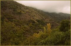 #   Ha llegado # (jose luis naussa ( + 2 millones . )) Tags: paisajes otoo   ie nwn