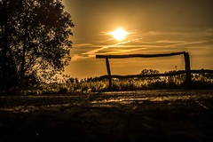 Late Summer Fence (wolfi8723) Tags: fence field fencefriday sunset sunshine friday nature natur sommer sonne sun
