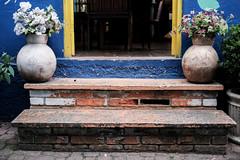 The door steps (marcelo_valente) Tags: myfujifilm flowers xf27mm fujifilmxe2 xe2 fujifilm embudasartes vases vase fujixe2 steps fujixclub entrance fujilove house fuji xphotographer blue door yellow doorstep