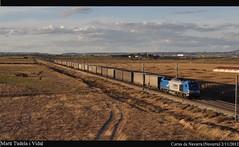 The blues remain (Mart Tudela) Tags: train tren european transport rail zug bulls zaragoza teco navarra cortes 335 mercancas comsa 335001