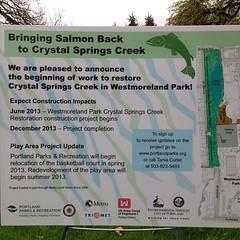 "They are starting!!! #westmoreland #park #wetland #restoration #parksandrec • <a style=""font-size:0.8em;"" href=""https://www.flickr.com/photos/61640076@N04/8637195675/"" target=""_blank"">View on Flickr</a>"