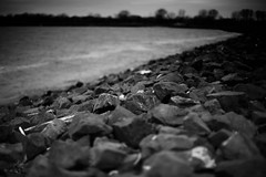 Day 111 Shoreline (chris langston photography) Tags: blackandwhite canon river 50mm newjersey jerseycity rocks f14 shoreline 5d nik hudson ef day111 libertystatepark 365project 5dclassic silverfeexpro2