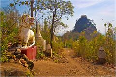 Taung Kalat (electrigger) Tags: pagoda burma buddhist tiger monastery myanmar popa burmese birma kloster pagode taung kalat birmanie tuyin